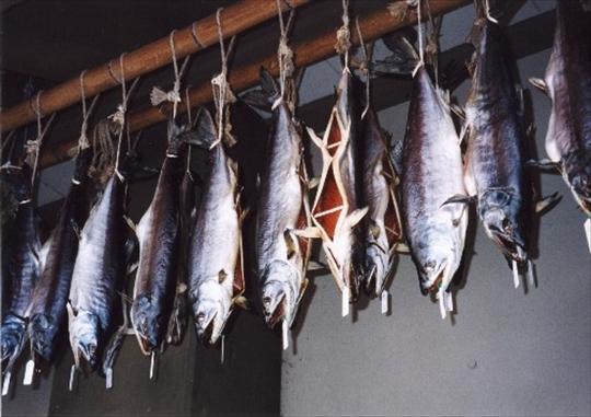 塩引き鮭 (7).jpg