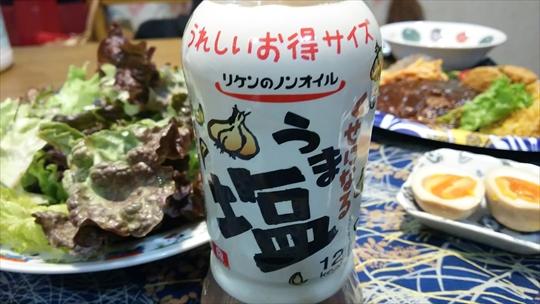 或る日の夕食 ドライカレー&ハンバーグプレート ダメだこりゃ (^▽^;) (7).JPG