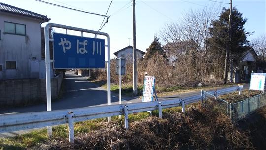 ヤバい川 (3).JPG