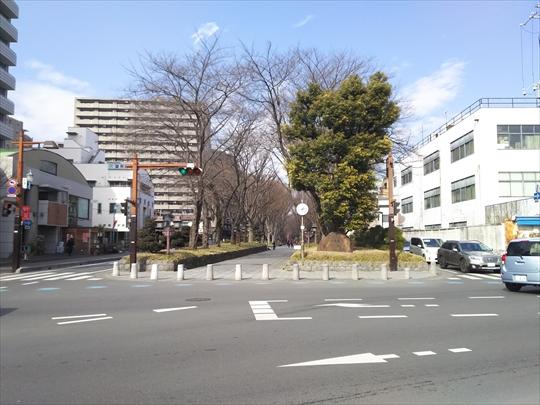 氷川神社@大宮 日本一長い参道 (8).JPG